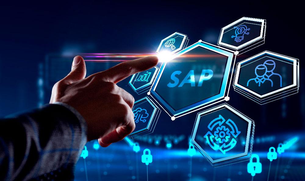 Guía Básica SAP